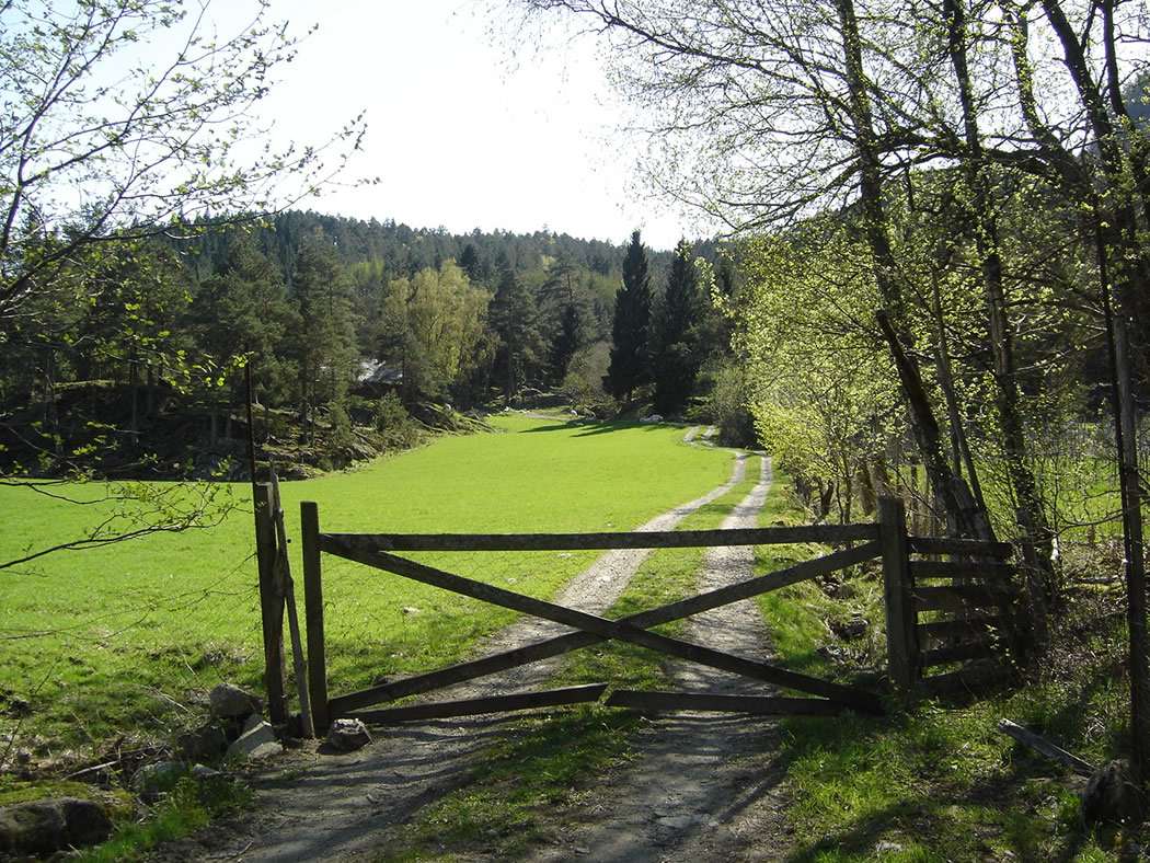 The farm gate into Mjøstølen - © Anne Gullbjørg Digranes