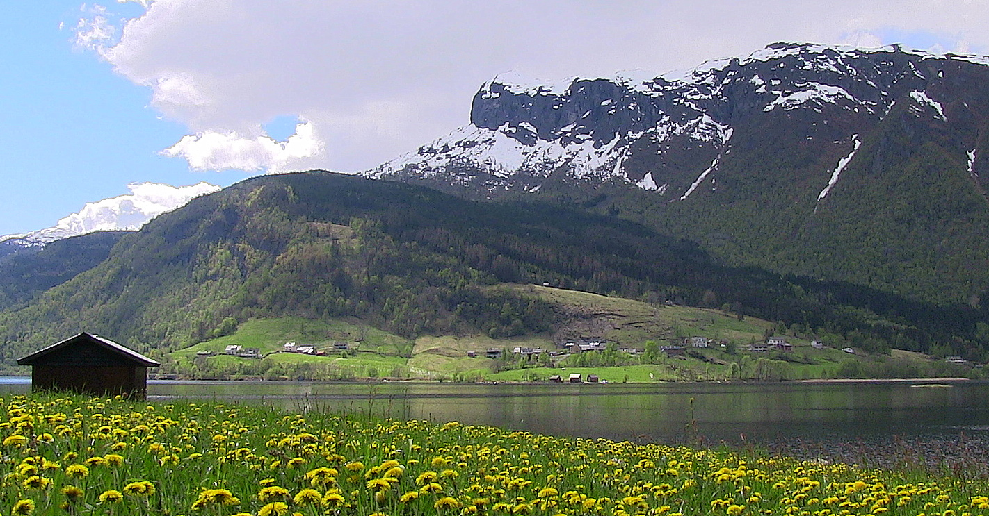 Nesheim as seen from Hollve. © Anne Gullbjørg Digranes